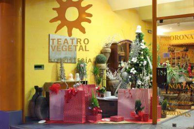 Floristería Teatro Vegetal